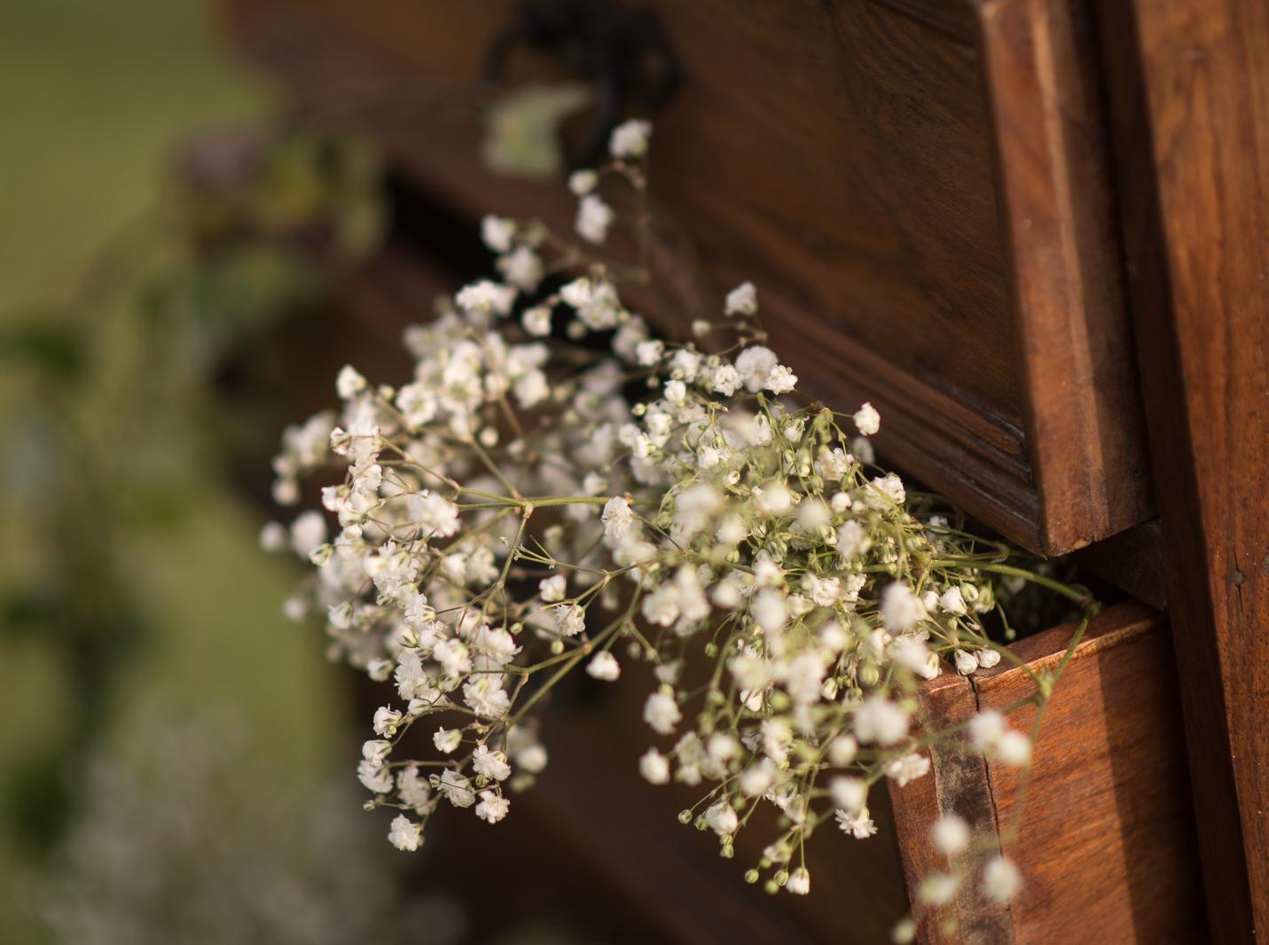 bodas-estilo-libre-jardin-cuba-8811.jpg