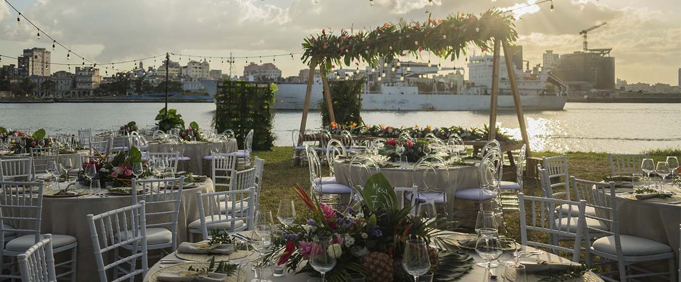 garden-wedding-tropical-ladivinapastora-cuba